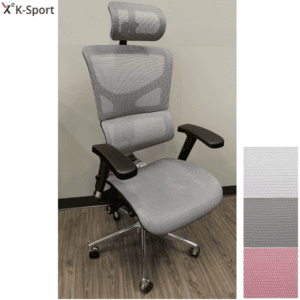 X2 Exec Managment Mesh Chair with 10 Ergonomic Features