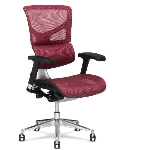 Features and Benefits of X-chair